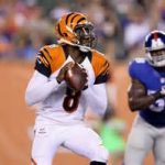 Bengals have waived QB Josh Johnson and two others