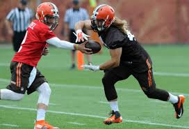 Cleveland Browns have released former NAIA running back Luke Lundy