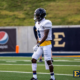 Karon Delince East Tennessee NFL Draft