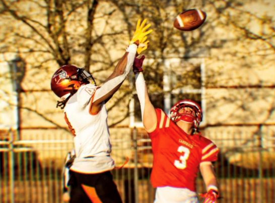 Heidelberg University playmaker Dimitri Penick recently sat down with NFL Draft Diamonds writer Justin Berendzen. Check it out.